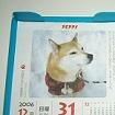 Nペピイ日めくりカレンダー2006年